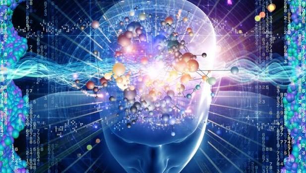 спорт и мозг